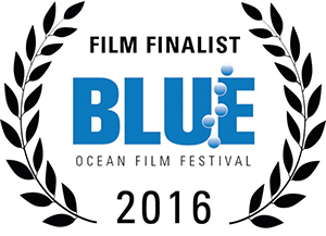 laurel-blue-ocean-finalist